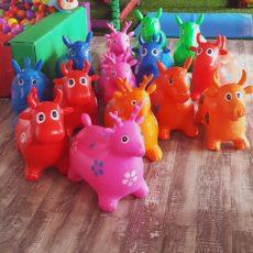 Bouncy Animals